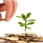 Belajar, Bisnis dan Investasi